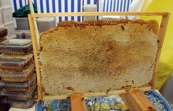 蜂蜜梳子 免版税库存图片