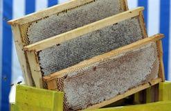 蜂蜜梳子 库存图片