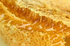 蜂蜜片 免版税库存照片