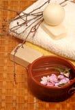 蜂蜜用肥皂擦洗温泉 库存照片