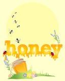 蜂蜜背景 免版税库存图片