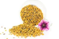 蜂蜜花粉五谷 库存图片