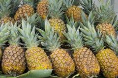 蜂蜜菠萝 免版税库存照片