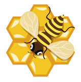 蜂蜜蜂和蜂蜜梳子平的设计 免版税库存照片