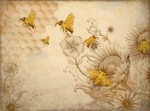 蜂蜜蜂和野花 向量例证