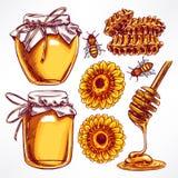 蜂蜜集合 免版税库存照片