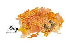 蜂蜜 在白色背景的手拉的水彩绘画 也corel凹道例证向量 库存图片