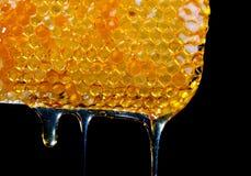 从蜂蜜comb.JH的蜂蜜水滴 库存图片