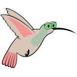 蜂鸟动画片传染媒介例证 免版税库存图片
