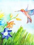 蜂鸟飞行到花收集花蜜 纸水彩 复制空间 免版税库存照片
