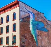 蜂鸟鸟难看的东西砖墙 库存照片