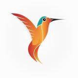 蜂鸟-例证 免版税库存照片