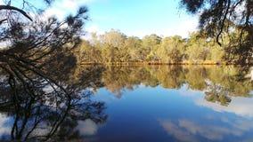 蜒蜒河,西澳州 图库摄影