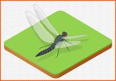 蜻蜓传染媒介eps 库存照片