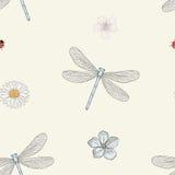 蜻蜓和花无缝的样式 免版税图库摄影