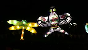 蜻蜓和鸟手工制造中国灯笼 图库摄影