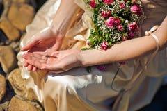蜻蜓在妇女的手上 免版税库存图片