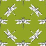 蜻蜓无缝的样式传染媒介手拉的例证 库存照片