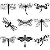蜻蜓,在白色背景的黑剪影 免版税图库摄影