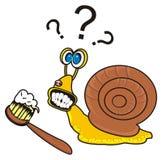 蜗牛发现了一把牙刷 库存图片