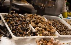 蜗牛和壳海鲜在冰在la Boqueria市场上在巴塞罗那 库存照片