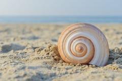 蜗牛房子 库存图片
