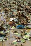 蜗牛狩猎 免版税库存图片