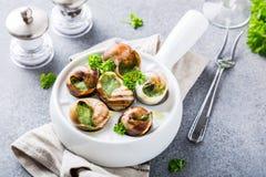 蜗牛用大蒜草本黄油 库存照片