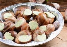 蜗牛用大蒜黄油 免版税库存照片