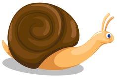 蜗牛 向量例证
