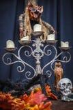 蜘蛛、秋天橡木叶子、枝形吊灯、图腾头骨和吸血鬼 库存照片