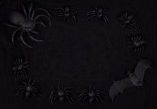 蜘蛛和棒在网有黑背景 图库摄影