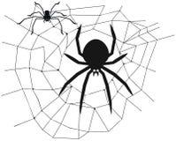 蜘蛛在网的中心 库存例证