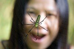蜘蛛恐怖 免版税库存图片
