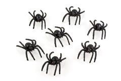 蜘蛛玩具 图库摄影