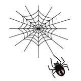 蜘蛛编织一个网 免版税库存照片