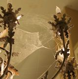 蜘蛛网枝形吊灯 库存图片