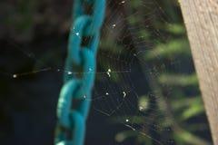 蜘蛛网络-一个蓝色链子在背景中 库存图片