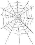 蜘蛛网股票传染媒介例证 库存图片