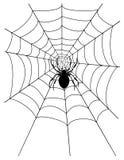 蜘蛛网股票传染媒介例证 免版税库存图片