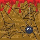 蜘蛛血液 图库摄影