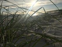 蜜月海岛国家公园 库存图片