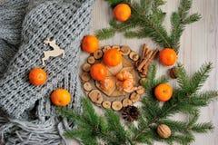 蜜桔、围巾和云杉的分支在一张木桌上 免版税图库摄影