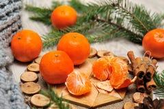 蜜桔、围巾和云杉的分支在木背景 免版税库存图片