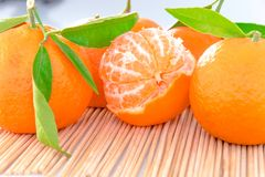 蜜桔或柑桔与被隔绝的绿色叶子 库存图片