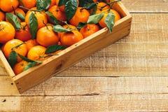 蜜桔桔子,柑桔,与绿色叶子的柑橘水果在轻的木背景的一个木箱与拷贝空间 免版税库存照片