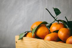 蜜桔桔子,柑桔,与绿色叶子的柑橘水果在轻的背景的一个木箱与拷贝空间 库存图片