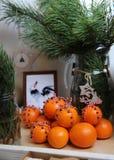 蜜桔,装饰用丁香和红白的鞋带 在毛皮树背景的特写镜头在一个玻璃花瓶分支 免版税图库摄影