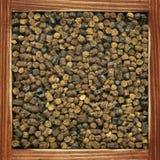 蜜蜂食料 免版税库存照片
