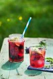 蜜饯用在瓶子的果子,自然本底 免版税库存照片